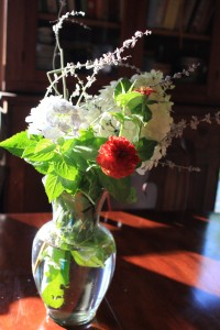 Last Days of Summer; Hydrangea and Zinnea